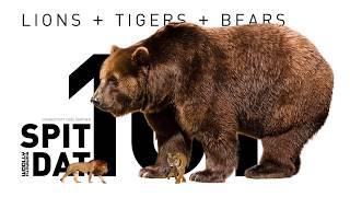LIONS + TIGERS + BEARS | Spit Dat Rituals | www.woollymammoth.net