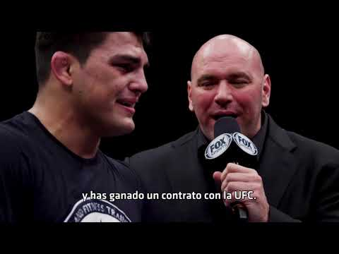 UFC 234: Whittaker vs Gastelum - Conteo Regresivo