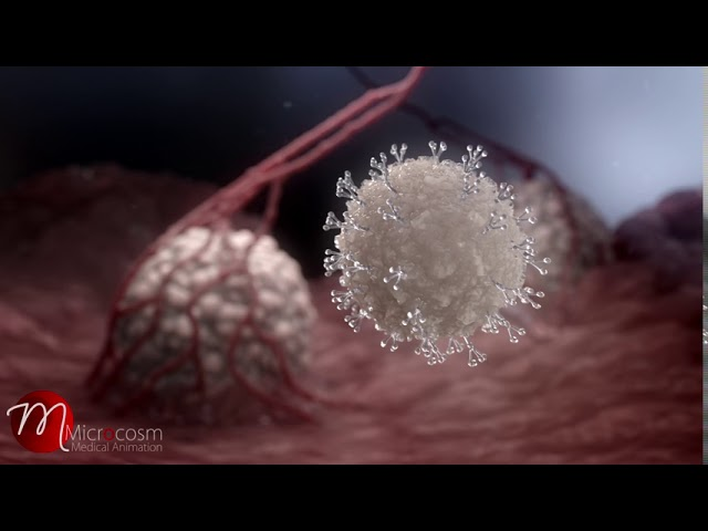 T-Cell activation (stylized) short clip by Microcosm medical Animation
