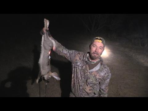 Night Stalker  Nothings Safe  Bloody Arrow