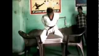 Martial Arts Stunt, Breaking Tile/Plates Through Head and Karate