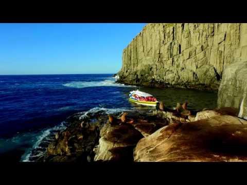 Tasman Island Cruises in Tasmania, Australia