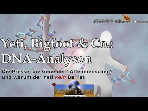 Sylvanas Windläufer: Anbruch der Nacht - WoW Lore Lesung Analyse [UNCUT]из YouTube · Длительность: 1 час32 мин6 с