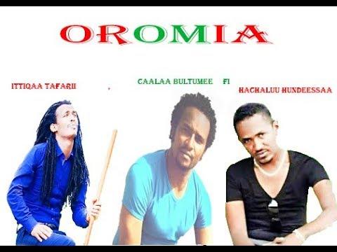 Ittiqaa Tafarii, Caalaa Bultumee fi Hachaluu Hudeessaaa artistoota beekamoo