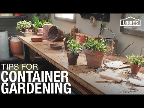 How To Plant a Container Garden | Gardening Tips and Tricks