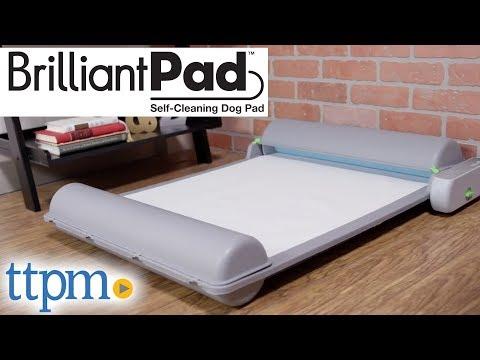 Brilliant Pad from Brilliant Pet 2 LLC