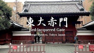 文京区本郷にある東京大学の赤門です。 東大と言えば「赤門」。その昔、...