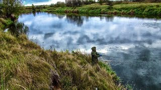 Где искать щуку когда ты в депрессии Депрессивная осень Рыбалка на спиннинг