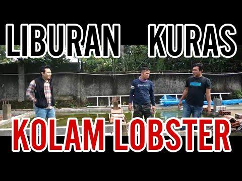Liburannya Nguras Kolam Lobster