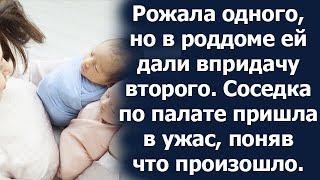 Женщина унесла из роддома ребенка соседки по палате. Вместе им веселее, решила она и не ошиблась