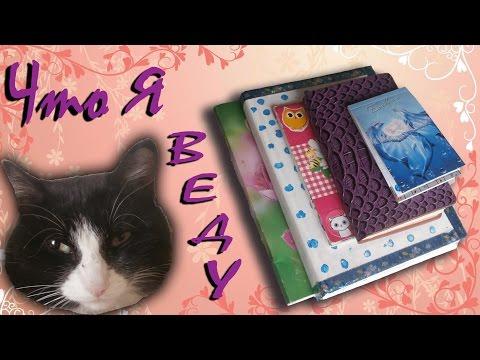 Как назвать котенка путеводитель по кошачьим кличкам