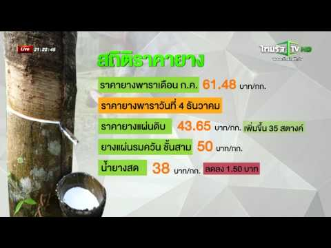 Thairath TV : ยางเหลือ 35 บาท/กก. ต่ำสุดในรอบ 10 ปี 7/12/2557