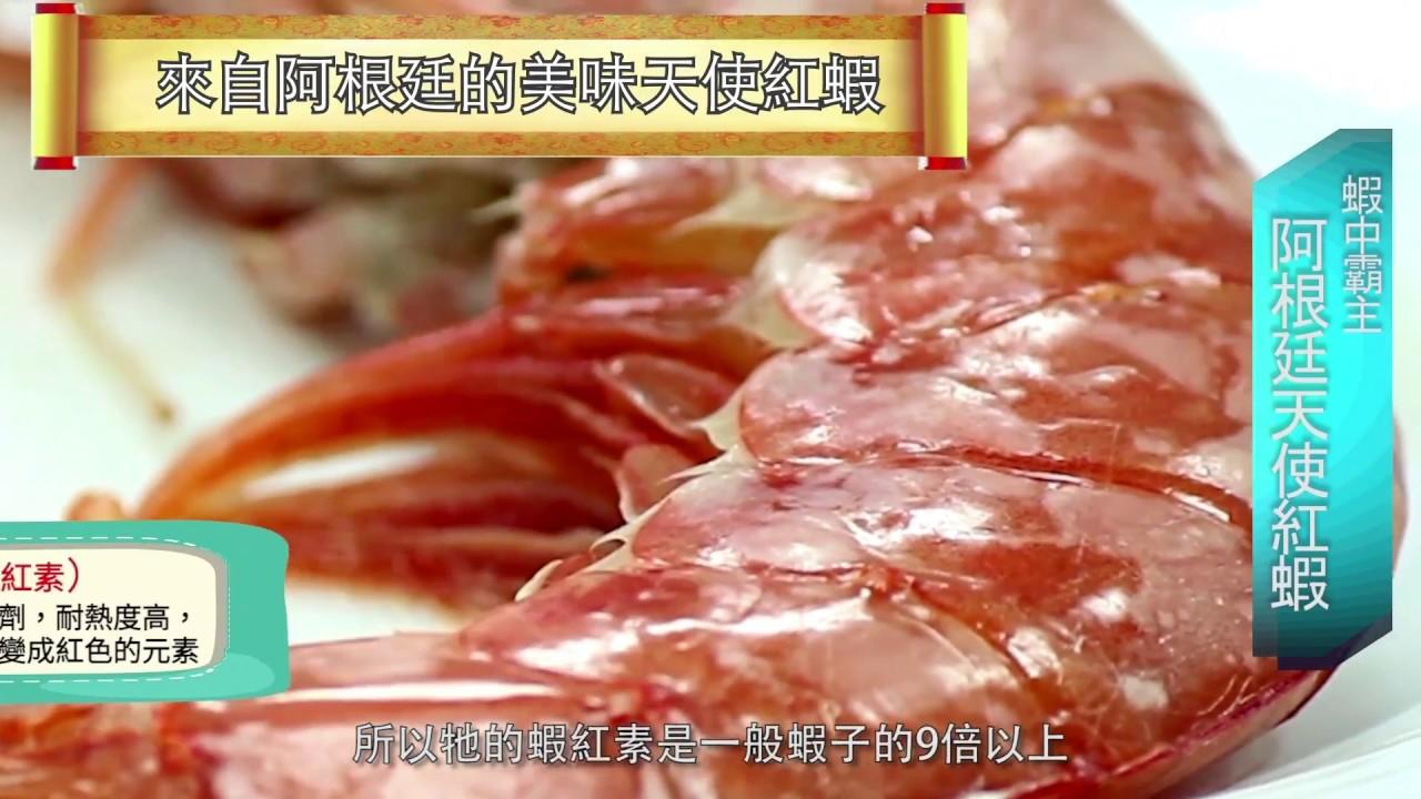 漁季料理小教室-阿根廷天使紅蝦 - YouTube