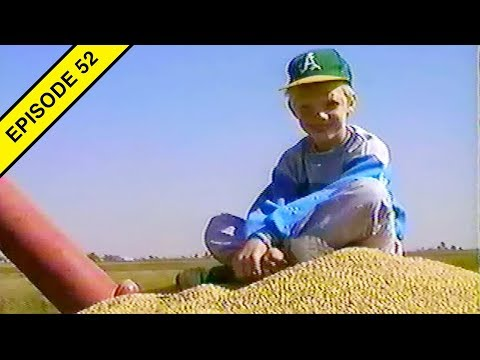 The 1989 Rice Harvest!