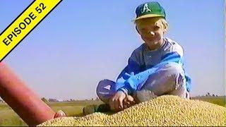 The 1989 Rice Harvest!