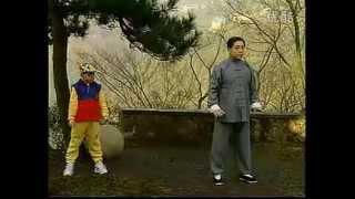 1 楊氏85式太極拳傅清泉 yang style taichi 85 form fu qingquan