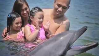 Meet Sea Lions & Dolphins at Ocean Adventure Subic Bay