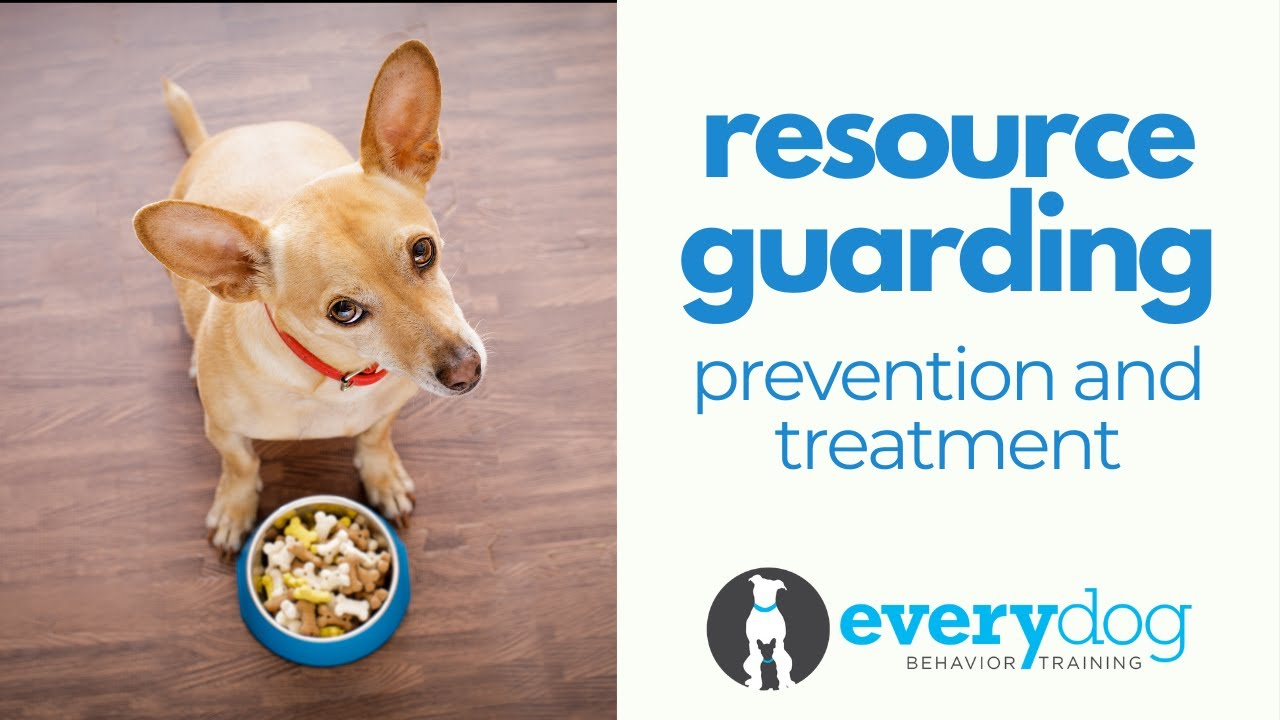 Resource Guarding
