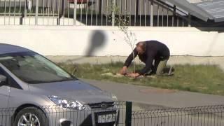 ЖК Солнечный город Волгоград. Озеленение. Высадка деревьев(, 2015-10-05T10:53:53.000Z)