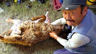 Mongolian BBQ \