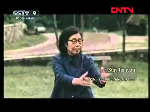 Chinese Kung Fu - Internal Martial Arts