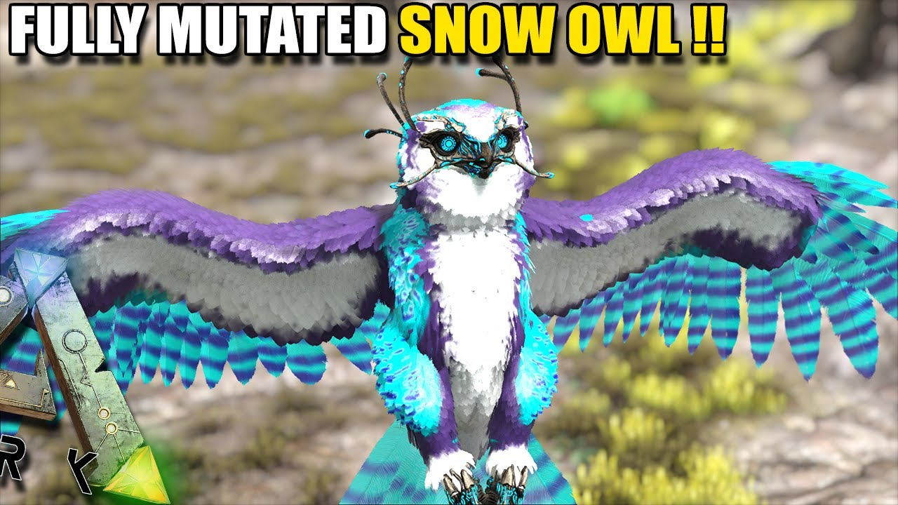 Download FULLY MUTATED SNOW OWL, HE'S A BEAST!    ARK SURVIVAL EVOLVED EP15