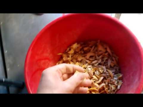 Блюда из фасоли — 68 рецептов с фото. Как приготовить фасоль?