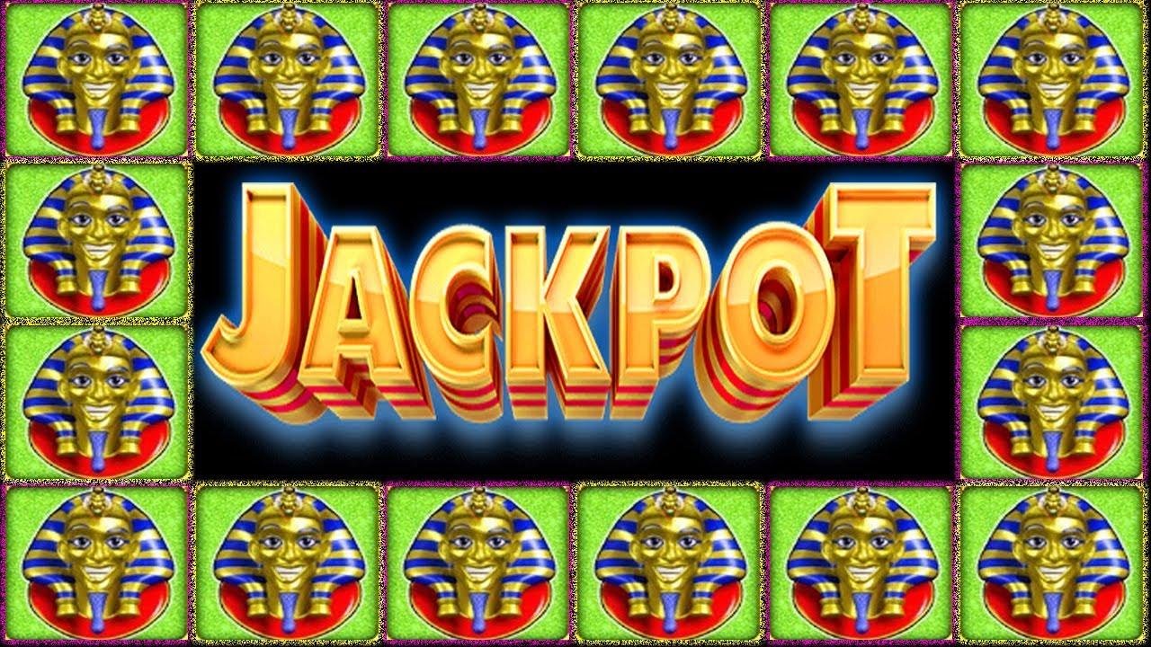 im betting on the pharaoh