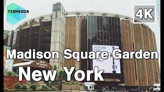 【4K】🇺🇸🗽Walking around Madison Square Garden in New York City🎧, New York, United States