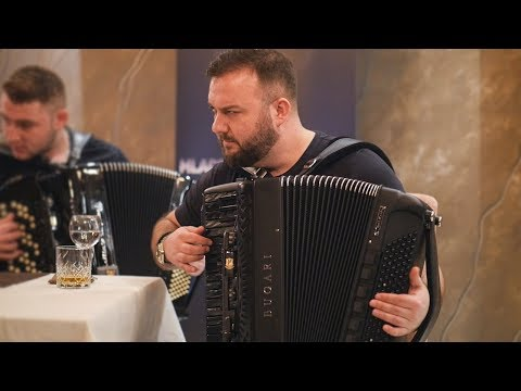 BORKO RADIVOJEVIC & Orkestar Mladena Spasojevica & PANTERI - KOLO - 2019