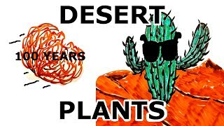What Do DESERT PLANTS Do Differently?