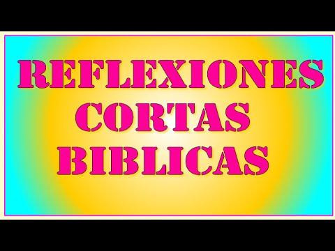 Reflexiones Cortas Biblicas Youtube