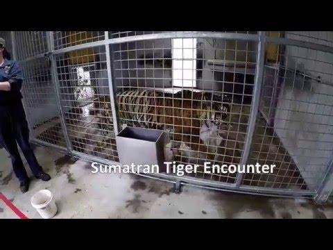 Orana Wildlife Park visit Christchurch New Zealand