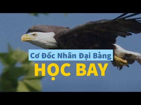 Cơ Đốc Nhân Đại Bàng – HỌC BAY | Ms. Ngô Minh Hòa (16-08-2020)