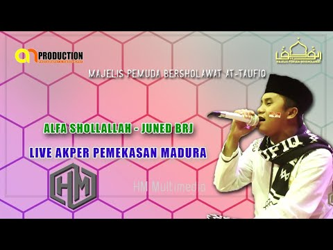 Alfa Shollallah - Juned BRJ  - Pemuda Bersholawat Attaufiq - Live Akper Pamekasan