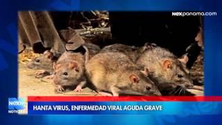 Hantavirus, Enfermedad viral aguda grave