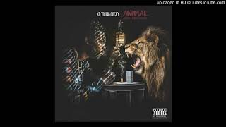 Video KD Young Cocky - Animal (prod by D. Brooks Exclusive) Official Audio download MP3, 3GP, MP4, WEBM, AVI, FLV November 2018