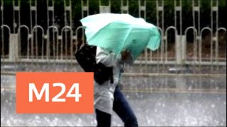 Эксперт рассказал о климатических аномалиях и прогнозах - Москва 24