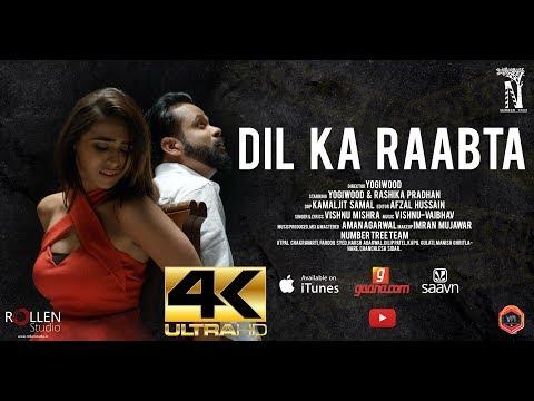 Dil Ka Raabta  (Exclusive Music Video 4k) YogiWood & Rashika Pradhan | Number Tree| Vishnu Mishra