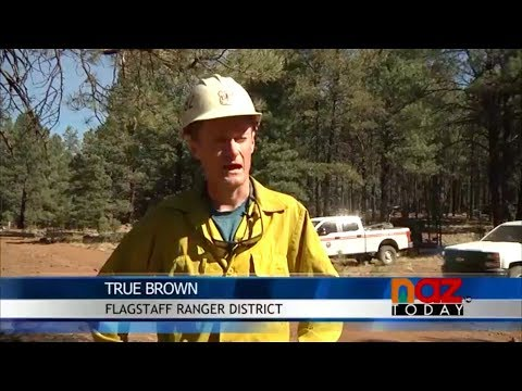 Flagstaff Forest Service Combat Local Wildfire