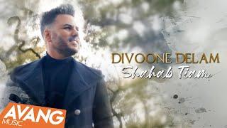 Shahab Tiam - Divooneh Delam OFFICIAL VIDEO   شهاب تیام - دیوونه دلم