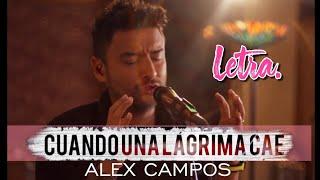 CUANDO UNA LAGRIMA CAE ALEX CAMPOS Letra HD