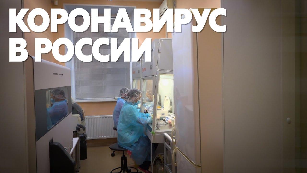 """Картинки по запросу """"коронавирус в России"""""""