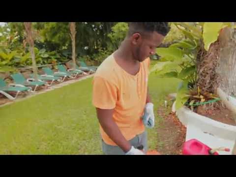 Shac - Life (Betta Mi) (Official Video)