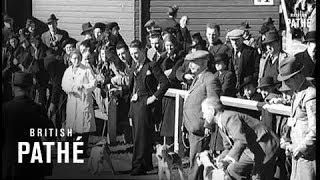 Irish Kennel Club Show (1939)