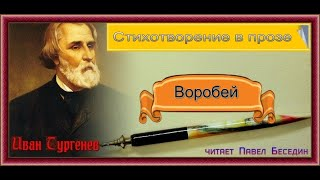 Воробей— Иван Тургенев — читает Павел Беседин