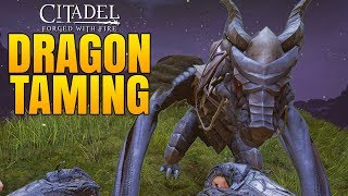 TAMING AND RIDING A DRAGON! - Citadel: Forged with Fire Gameplay #6