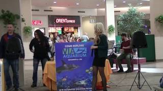 The Beat Goes On with Joe Sinatra - VIA Aquarium Opening Performance