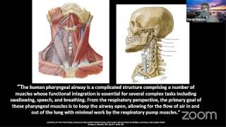 The role of Myofunctional Therapy in Dental Practice by Dr Derek Mahony