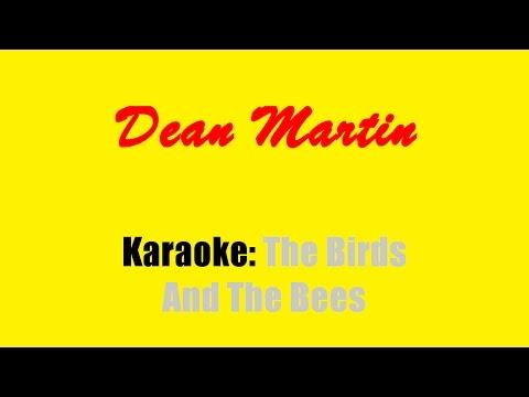 Karaoke: Dean Martin / The Birds And The Bees